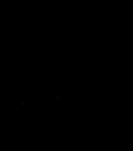 transparant spelewijs logo zwart